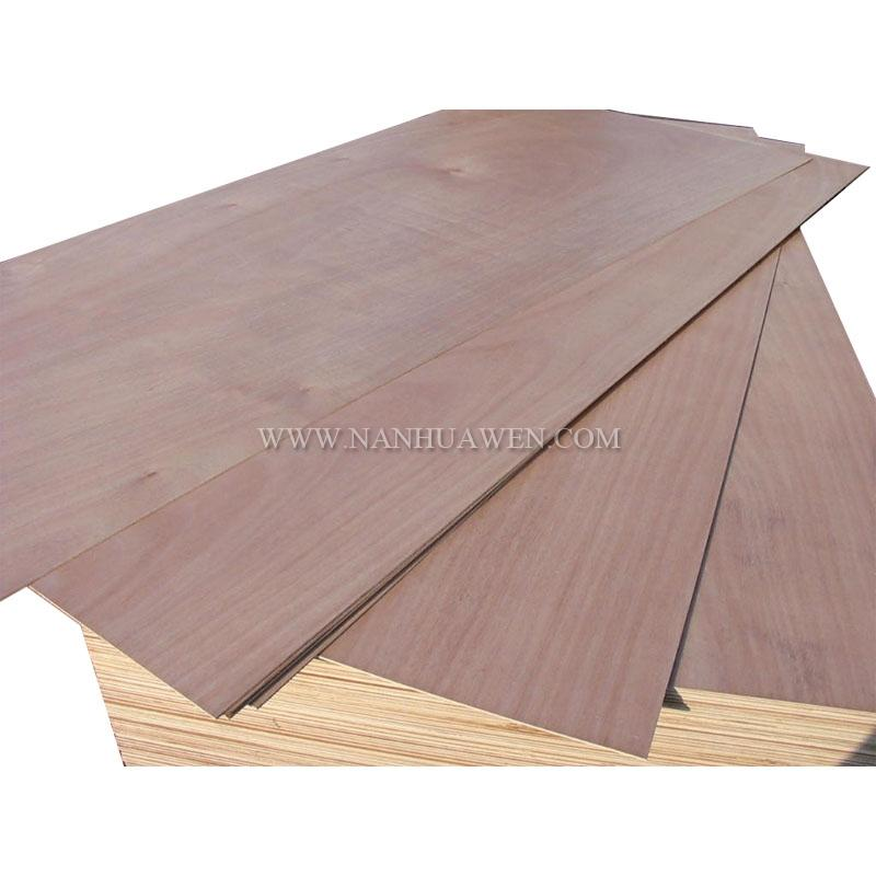 plywood door skin.JPG